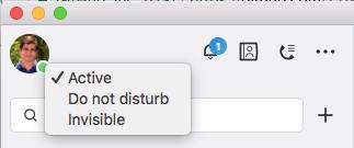 screenshot of David Hemmat setting skype status to online